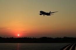 ☆ライダーさんが、成田国際空港で撮影したジェットスター 787-8 Dreamlinerの航空フォト(飛行機 写真・画像)