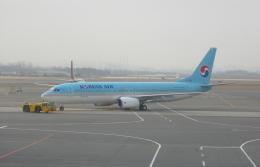 しかばねさんが、大邱国際空港で撮影した大韓航空 737-86Nの航空フォト(飛行機 写真・画像)