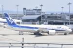 FLYING  HONU好きさんが、関西国際空港で撮影した全日空 787-8 Dreamlinerの航空フォト(飛行機 写真・画像)