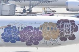 FLYING  HONU好きさんが、関西国際空港で撮影した吉祥航空 787-9の航空フォト(飛行機 写真・画像)