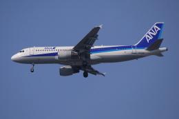TOPAZ102さんが、伊丹空港で撮影した全日空 A320-211の航空フォト(飛行機 写真・画像)