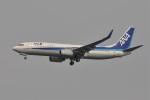 kumagorouさんが、羽田空港で撮影した全日空 737-881の航空フォト(飛行機 写真・画像)