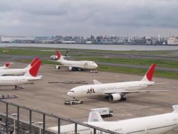 Noyu30さんが、羽田空港で撮影した日本航空 777-289の航空フォト(飛行機 写真・画像)