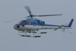 とらとらさんが、那覇空港で撮影したエクセル航空 AS355N Ecureuil 2の航空フォト(飛行機 写真・画像)