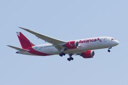 ladyinredさんが、RJAAで撮影したアビアンカ航空 787-8 Dreamlinerの航空フォト(飛行機 写真・画像)