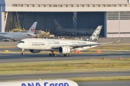 JA1118Dさんが、羽田空港で撮影したエアバス A350-941の航空フォト(飛行機 写真・画像)