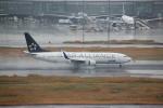 shimayanJPさんが、羽田空港で撮影した全日空 737-881の航空フォト(飛行機 写真・画像)