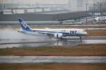 shimayanJPさんが、羽田空港で撮影した全日空 787-8 Dreamlinerの航空フォト(飛行機 写真・画像)