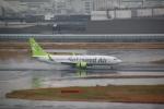 shimayanJPさんが、羽田空港で撮影したソラシド エア 737-881の航空フォト(飛行機 写真・画像)