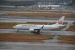 shimayanJPさんが、羽田空港で撮影した日本航空 737-846の航空フォト(飛行機 写真・画像)