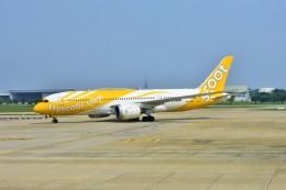 Hiro Satoさんが、ドンムアン空港で撮影したスクート 787-8 Dreamlinerの航空フォト(飛行機 写真・画像)