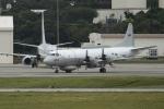 とらとらさんが、嘉手納飛行場で撮影したアメリカ海軍 EP-3E Orion (ARIES II)の航空フォト(飛行機 写真・画像)