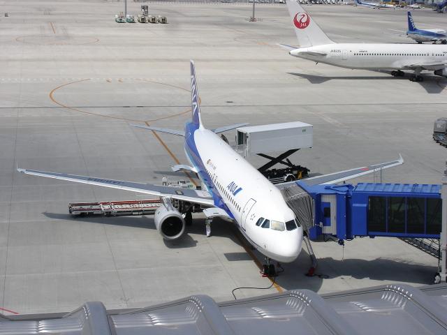 thomasYVRさんが、中部国際空港で撮影した全日空 A320-211の航空フォト(飛行機 写真・画像)