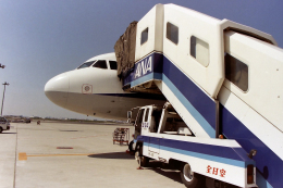 kumapapaさんが、羽田空港で撮影した全日空 A320-211の航空フォト(飛行機 写真・画像)