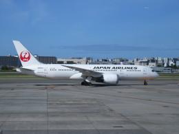 LOVE767さんが、伊丹空港で撮影した日本航空 787-8 Dreamlinerの航空フォト(飛行機 写真・画像)