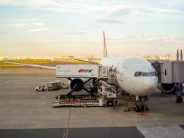 Mame @ TYOさんが、羽田空港で撮影した日本航空 777-246の航空フォト(飛行機 写真・画像)