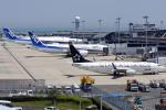 sachiさんが、関西国際空港で撮影した全日空 737-881の航空フォト(飛行機 写真・画像)