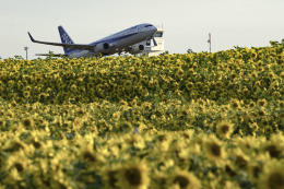 planetさんが、女満別空港で撮影した全日空 737-881の航空フォト(飛行機 写真・画像)