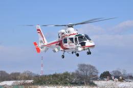 パンサーRP21さんが、朝日航洋川越メンテナンスセンターで撮影した福岡市消防局消防航空隊 AS365N2 Dauphin 2の航空フォト(飛行機 写真・画像)