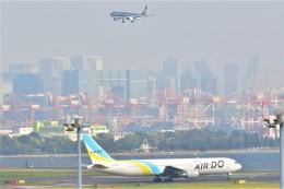 Hiro Satoさんが、羽田空港で撮影したAIR DO 767-33A/ERの航空フォト(飛行機 写真・画像)
