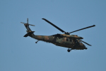 M.Ochiaiさんが、新田原基地で撮影した陸上自衛隊 UH-60JAの航空フォト(飛行機 写真・画像)