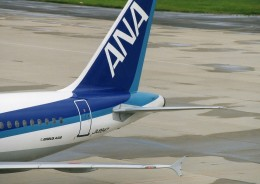 ヒロジーさんが、新潟空港で撮影した全日空 A320-211の航空フォト(飛行機 写真・画像)