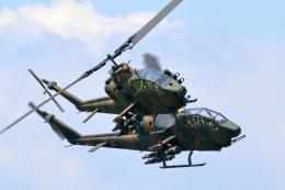 szkkjさんが、木更津飛行場で撮影した陸上自衛隊 AH-1Sの航空フォト(飛行機 写真・画像)