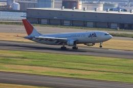 ゆう.さんが、羽田空港で撮影した日本航空 A300B4-622Rの航空フォト(飛行機 写真・画像)