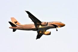 Hiro Satoさんが、スワンナプーム国際空港で撮影したミャンマー国際航空 A319-111の航空フォト(飛行機 写真・画像)
