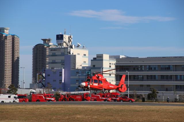 千葉県大隊さんが、東京臨海広域防災公園ヘリポートで撮影した東京消防庁航空隊 AS365N3 Dauphin 2の航空フォト(飛行機 写真・画像)