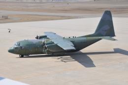 かぐさんが、新潟空港で撮影した大韓民国空軍 C-130 Herculesの航空フォト(飛行機 写真・画像)