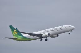 ずっきーさんが、成田国際空港で撮影した春秋航空日本 737-81Dの航空フォト(飛行機 写真・画像)
