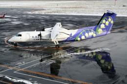 shibu03さんが、札幌飛行場で撮影したエアーニッポンネットワーク DHC-8-314Q Dash 8の航空フォト(飛行機 写真・画像)