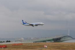 どんちんさんが、関西国際空港で撮影した全日空 737-881の航空フォト(飛行機 写真・画像)