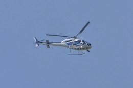 kumagorouさんが、仙台空港で撮影した東邦航空 AS355F2の航空フォト(飛行機 写真・画像)