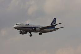 ゆう.さんが、成田国際空港で撮影した全日空 A320-214の航空フォト(飛行機 写真・画像)