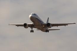 ゆう.さんが、成田国際空港で撮影した全日空 A320-211の航空フォト(飛行機 写真・画像)