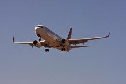 ゆう.さんが、成田国際空港で撮影した深圳航空 737-87Lの航空フォト(飛行機 写真・画像)