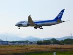 yutopさんが、米子空港で撮影した全日空 787-8 Dreamlinerの航空フォト(飛行機 写真・画像)
