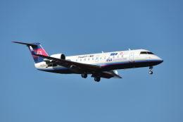 ポン太さんが、成田国際空港で撮影したアイベックスエアラインズ CL-600-2B19 Regional Jet CRJ-100LRの航空フォト(飛行機 写真・画像)