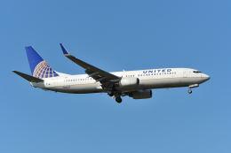航空フォト:N13227 ユナイテッド航空 737-800