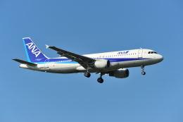 航空フォト:JA8393 全日空 A320
