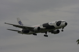 ゆう.さんが、成田国際空港で撮影した全日空 767-381/ERの航空フォト(飛行機 写真・画像)