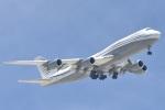 cornicheさんが、ドーハ国際空港で撮影したカタールアミリフライト 747-8KB BBJの航空フォト(飛行機 写真・画像)