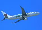 タミーさんが、那覇空港で撮影した日本トランスオーシャン航空 737-8Q3の航空フォト(飛行機 写真・画像)