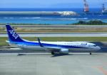 タミーさんが、那覇空港で撮影した全日空 737-881の航空フォト(飛行機 写真・画像)