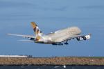 かずまっくすさんが、シドニー国際空港で撮影したエティハド航空 A380-861の航空フォト(飛行機 写真・画像)
