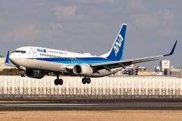 Ariesさんが、伊丹空港で撮影した全日空 737-881の航空フォト(飛行機 写真・画像)