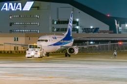 Ariesさんが、伊丹空港で撮影したANAウイングス 737-54Kの航空フォト(飛行機 写真・画像)