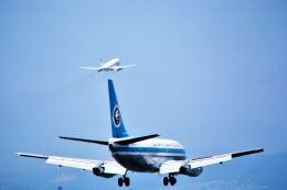 パール大山さんが、伊丹空港で撮影した全日空 737-281の航空フォト(飛行機 写真・画像)
